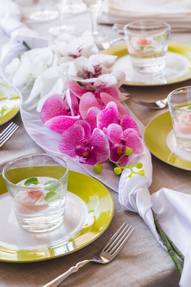 orchideje2